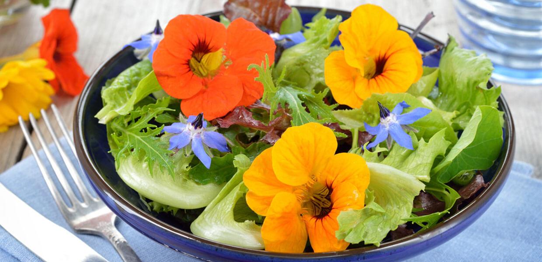 Blütensalat mit Marillen und Ziegenkäse